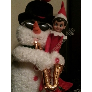 Snowflake, the Elf on the Shelf
